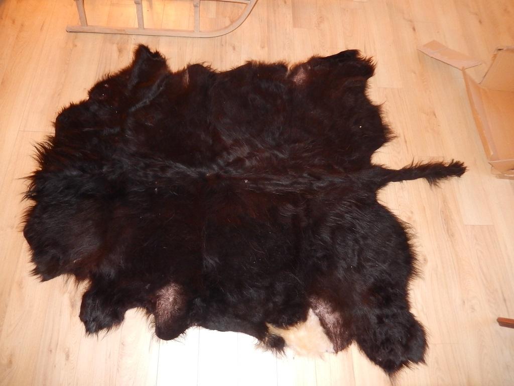 fourure noire avec tache blanche